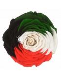XXL Kuwait