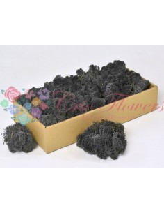 Licheni Negru Antracit-500gr