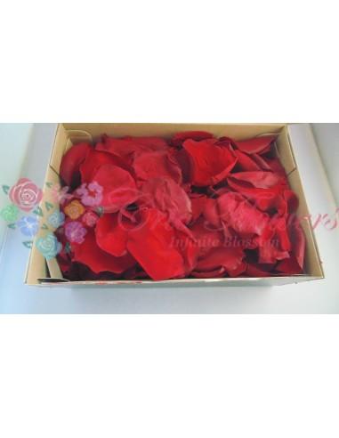 Petals 100gr Red01