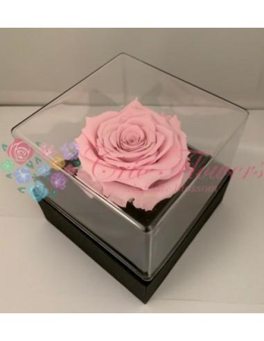 Giftbox Gb3 Pin04