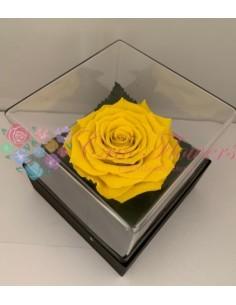 Giftbox Gb3 Yel02