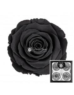 Trandafiri Criogenati Negru BellaBla01