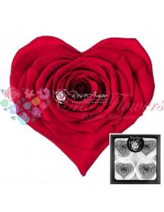 Trandafiri Criogenati Inima Rosu Deschis CBellaRed02