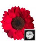 Wayra Red02