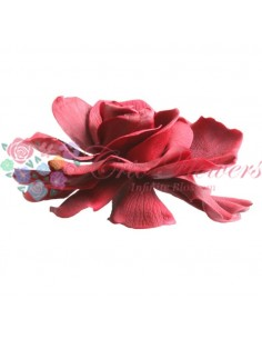 Gardenia Burgundy