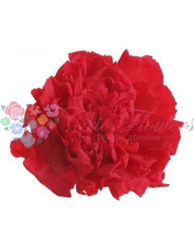 Garoafa rosie (Carnatiom Red)