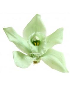 Orhidee Verde Menta(Cymbidium Mint Green)