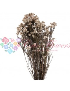Floare de Orez Stabilizata Natur