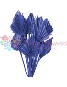 Frunze de Palmier Mini Albastru