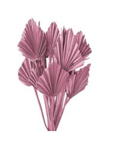 Frunze de Palmier Mini Roz