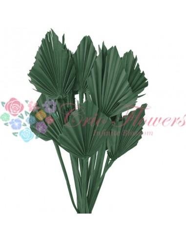 Frunze de Palmier Verde Inchis