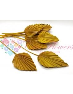 Frunze de Palmier Crem Cerat