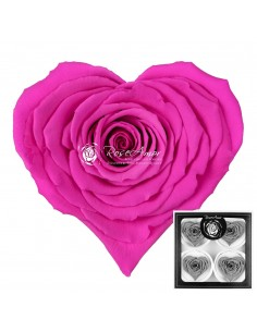 Trandafiri Criogenati Inima Fucsia CBellaPin07