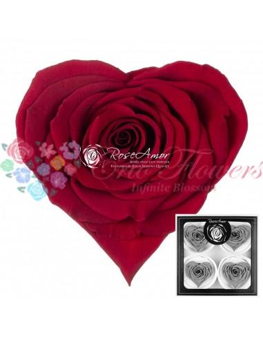 Trandafiri Criogenati Inima Rosu CBellaRed01