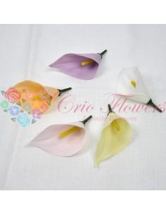 Trandafiri sapun Alb