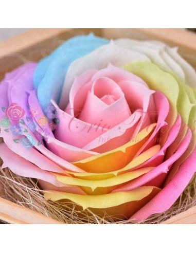 Trandafiri Sapun Multicolor Pink