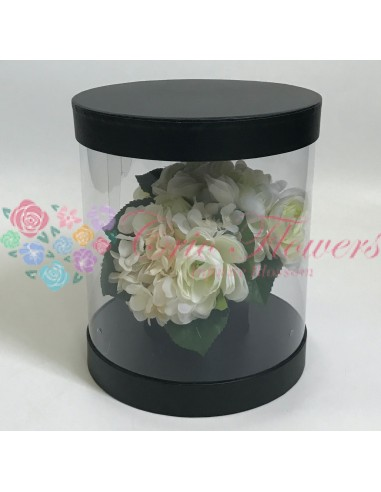 Cutiei Rotunda Transparenta Negru