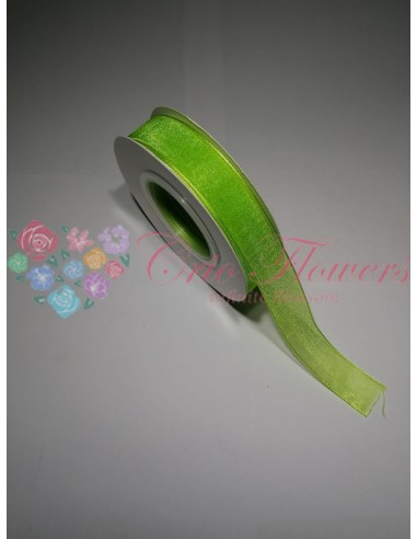 Panglica Organza Verde Neon