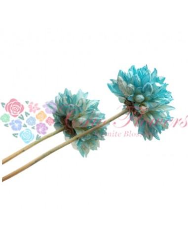 Floare Magnolie Uscata Turquoise
