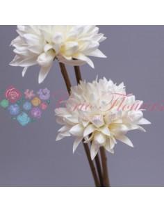 Floare Magnolie Uscata Alb
