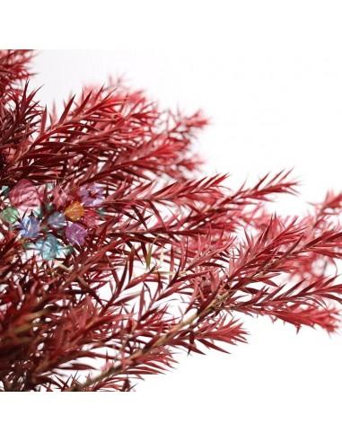 Crenguta Arbore Ceai Criogenata Maro