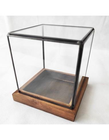 Terrarium Sticla Patrat 12cm
