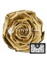 Trandafiri Criogenati Auriu XLGold
