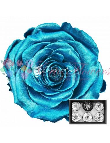 XL Silver blue