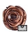 Trandafiri Criogenati Aramiu Metalic XLCopper