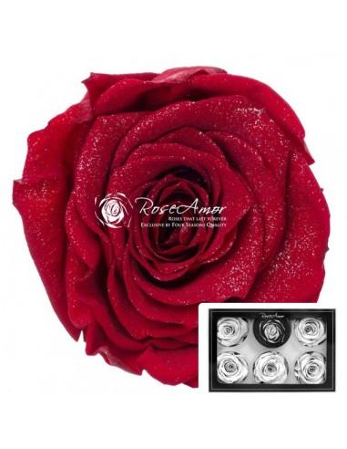 Trandafiri Criogenati Rosu Sclipitor XLDDRed02
