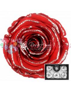 XL Glitter Silver Red01