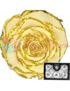 Trandafiri Criogenati Crem Sclipici XLGlitCha01