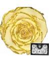 Trandafiri criogenati XLGlitCha01 Crem Sclipici