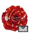 Trandafiri Criogenati Festiva Rosu XLFesRed02