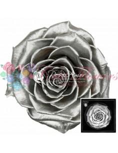 Trandafiri Criogenati Argintiu BonitaSilver