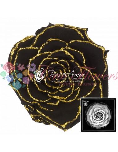 Bonita Glitter Gold Bla01