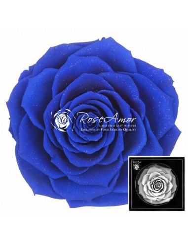 Bonita Blu03 diamond dust