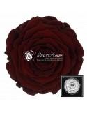 Trandafir Criogenat Rosu Ciocolata XXLCho01