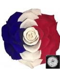 Bonita Flag France