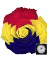 Trandafir Criogenat Multicolor BonitaRo