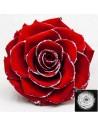 Trandafir Criogenat Rosu Sclipici BonitaGSilverRed02