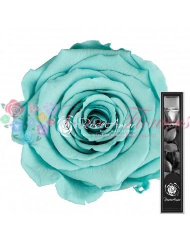 Trandafir Criogenat Tija Turquoise 30cmBlu02