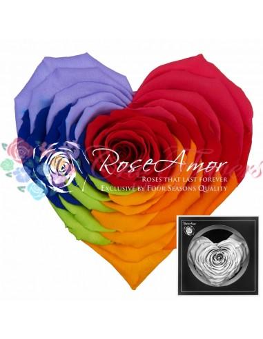 Corazon Rainbow Red02