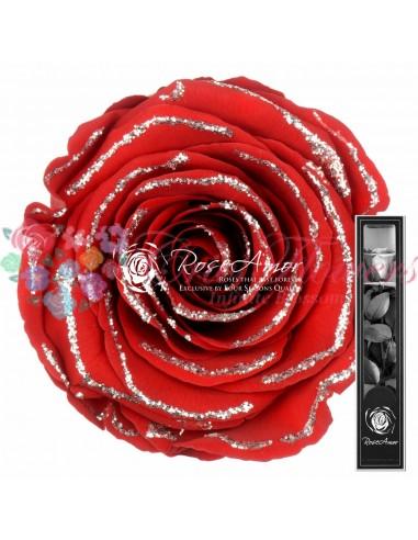 30cm Glitter silver Red01