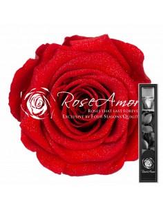 30cm Red02