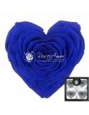Trandafiri Criogenati Inima Albastru CBellaBlu03
