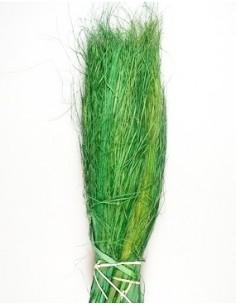 Iarba Ursului Verde