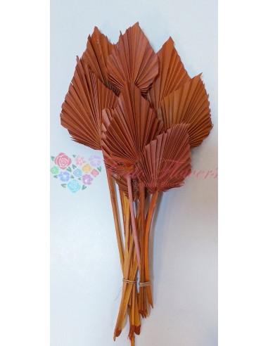 Frunze Palmier Mini Portocaliu Inchis