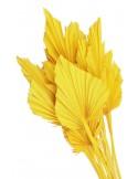 Frunze de Palmier Mini Galben