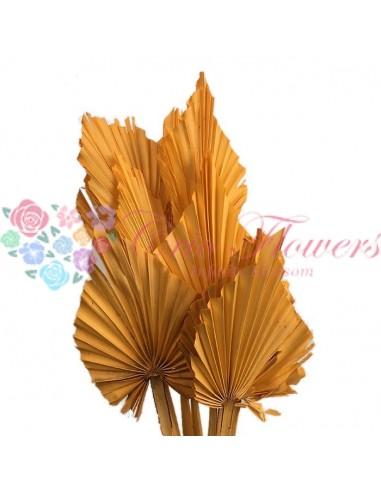 Frunze de Palmier Portocaliu Cerat